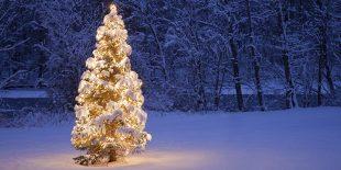 Weihnachtsferien Leuthardt AG 2016